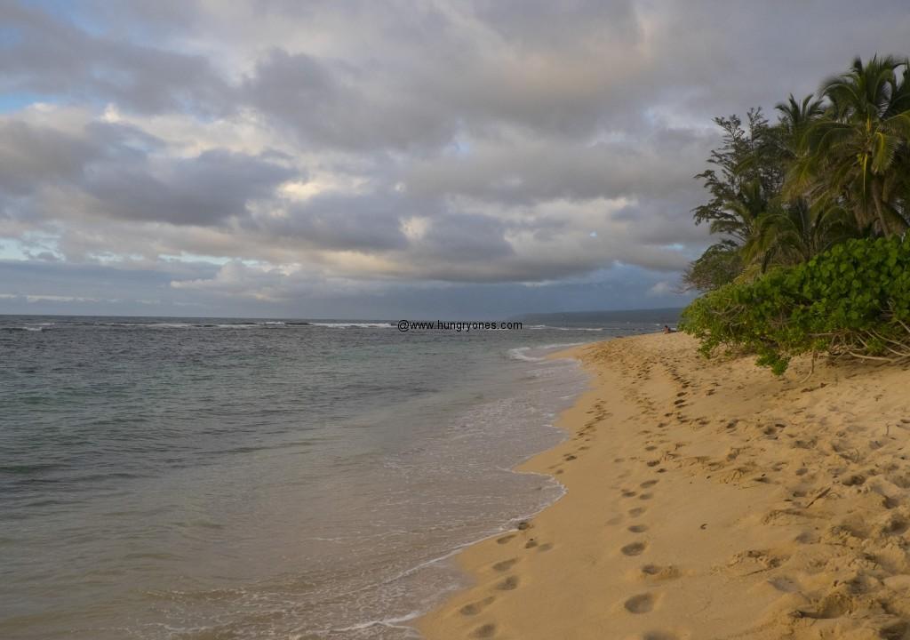 crozier.beach.6680