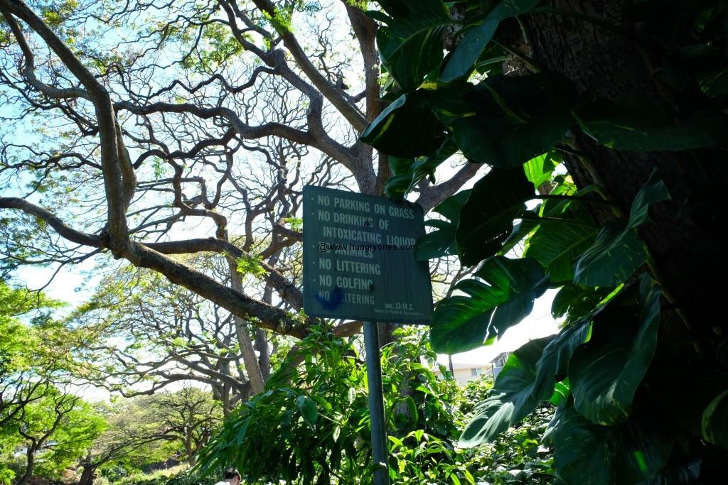 liliukalani.botanical.6081 copy