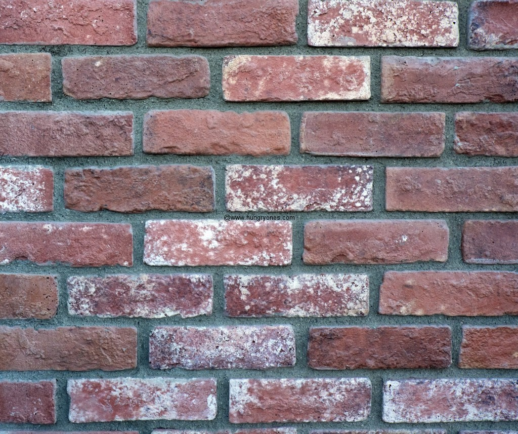Bricks in the wall.